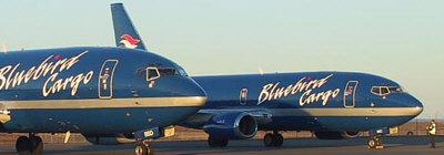 Flugfloti Bláfugls, Boeing 737-300